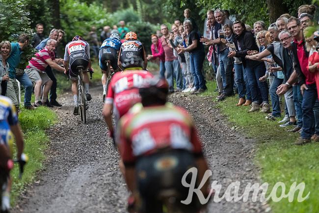 Race leaders Mathieu van der Poel (NED/Beobank-Corendon), Taco van der Hoorn (NED/Roompot-Nederlandse Loterij) &amp; Wout Van Aert (BEL/V&eacute;randas Willems-Crelan) splitting up the race leader group on a rough gravel section<br /> <br /> Dwars door het Hageland (1.1)<br /> 1 Day Race: Aarschot &gt; Diest (194km)