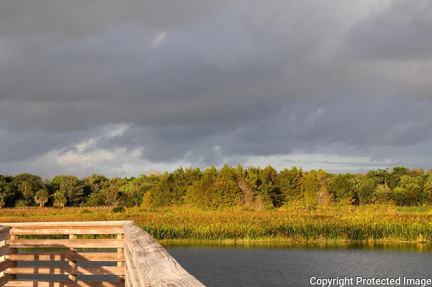 Late afternoon storm clouds approaching Green Cay Wetlands, Boynton Beach, Florida.