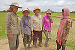 Woman Workers Planting Rice