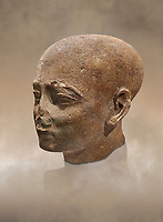 Ancient Egyptian statue shaved head of a priest, New Kingdom, 18th Dynasty, (1390-1353 BC). Egyptian Museum, Turin. Drovetti collection. Cat 3141.