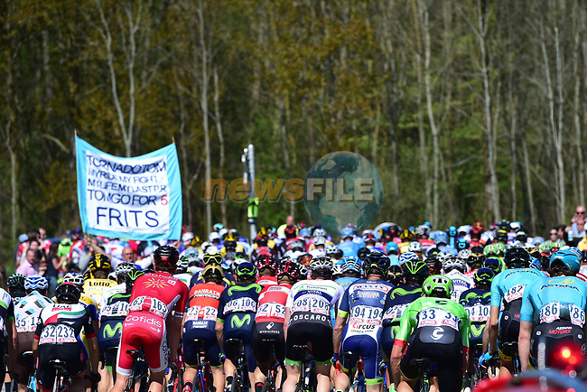 The peloton in action during the 115th edition of the Paris-Roubaix 2017 race running 257km Compiegne to Roubaix, France. 9th April 2017.<br /> Picture: ASO/P.Ballet | Cyclefile<br /> <br /> <br /> All photos usage must carry mandatory copyright credit (&copy; Cyclefile | ASO/P.Ballet)