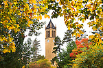 Iowa State University Fall Colors