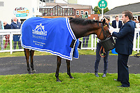 Yourtimeisnow has a drink of water in the winners enclosure after winning The Shadwell Dick Poole Fillies' Stakes  during the Bathwick Tyres & EBF Race Day at Salisbury Racecourse on 6th September 2018