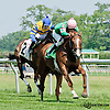 Vicky Ticky Tavie winning at Delaware Park on 6/17/13