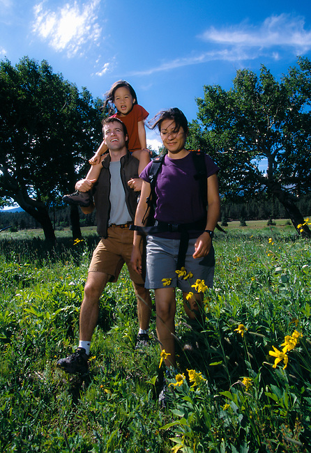 A young family hikes through a summer meadow in Rocky Mtn Nat'l Park, CO