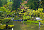 Seattle, WA<br /> View of sping green trees and pond reflections in the Japanese Garden, Washington Park Arboretum