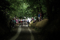 gravel road out of the forest<br /> <br /> 1st Dwars door het Hageland 2016<br /> (pics by Léon Van Bon)