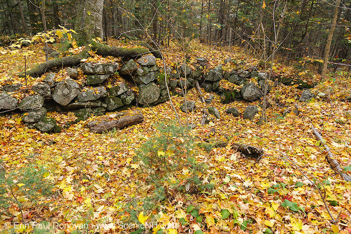 The Ira Dustin Place home site cellar hole along Sandwich Notch Road in Sandwich, New Hampshire. Sandwich Notch Road is a historic route established in 1801, and during the early 1800's thirty to forty families lived in the Notch. By the first decade of the twentieth century only one resident, Moses Hall, lived in the Notch.