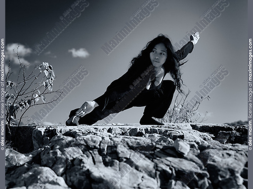 Artistic dramatic portrait of a young asian woman martial artist practicing Kung Fu in the nature under blue sky. Pu Bu stance. Ontario, Canada. Black and white.