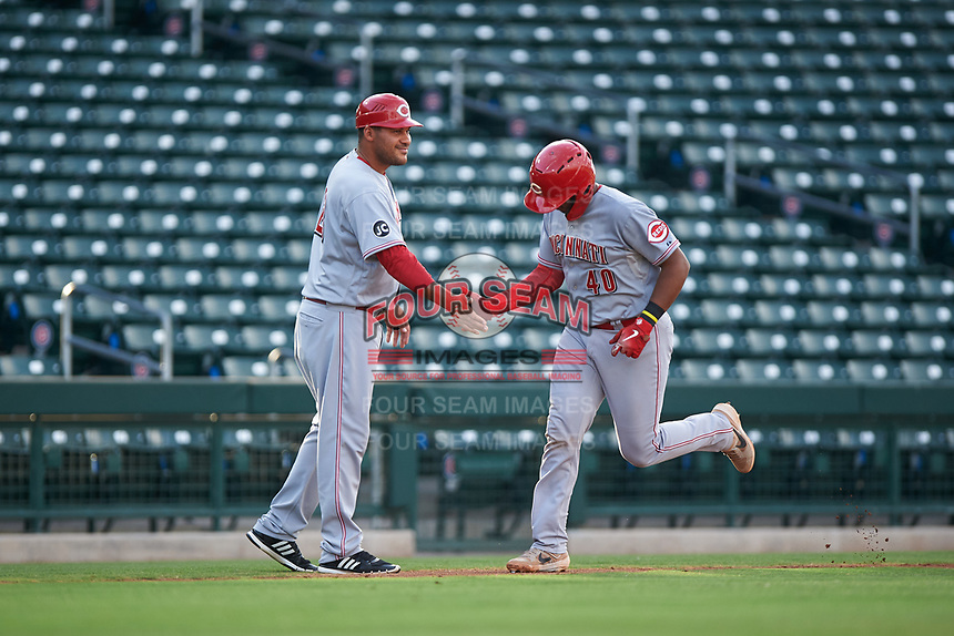 AZL Reds Jose Tello (40) is congratulated by Donald Lutz (23) after hitting a home run during an Arizona League game against the AZL Cubs 2 on July 23, 2019 at Sloan Park in Mesa, Arizona. AZL Cubs 2 defeated the AZL Reds 5-3. (Zachary Lucy/Four Seam Images)