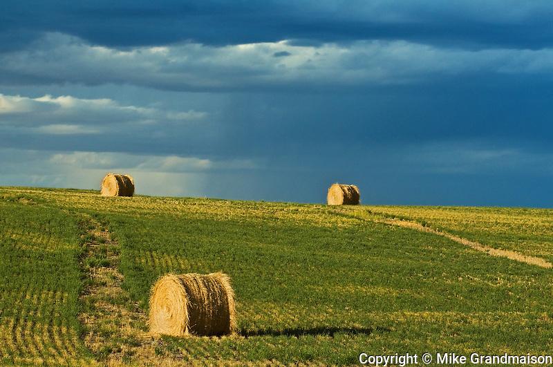 bales and coming storm<br /> near Grasslands National Park<br /> Saskatchewan<br /> Canada