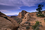 Morning clouds over sandstone, Island in the Sky District, Canyonlands National Park, UTAH