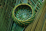 Woven Coconut palm frond  basket, Big Island, Hawaii