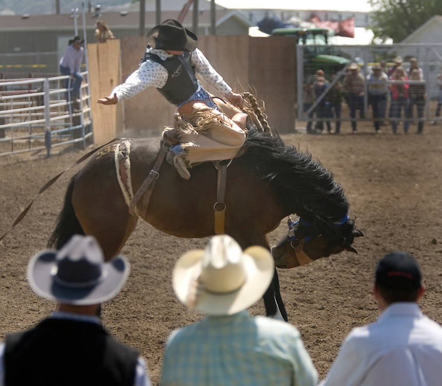 A trio of buyers, foreground, watches a cowboy buck a saddle bronc during the Miles City Bucking Horse Sale at the Eastern Montana Fairgrounds in Miles City Montana Sat., May 19, 2007. Saddle broncs and bareback broncs are auctioned off after they are bucked.