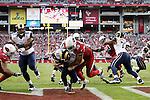 vs Rams 12/8/13