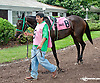 Nikoldini before The Forever Together Stakes at Delaware Park on 9/11/13