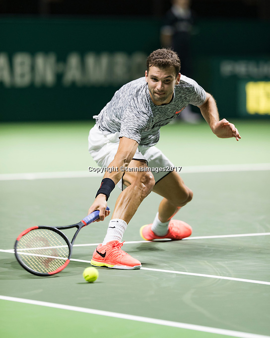 ABN AMRO World Tennis Tournament, Rotterdam, The Netherlands, 17 Februari, 2017, Grigor Dimitrov (BUL)<br /> Photo: Henk Koster