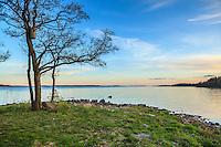 Fågelholk vid stranden på Riddersholm på Rådmansö i Roslagen