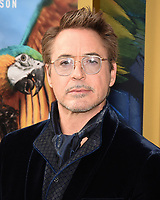 """11 January 2020 - Westwood, California - Robert Downey Jr.. Premiere Of Universal Pictures' """"Dolittle"""" held at the Regency Village Theatre. Photo Credit: Billy Bennight/AdMedia"""