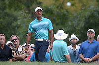 Gainesville, VA - August 1, 2015: Tiger Woods watches his chip shot on the 3rd hole during round 3 of the Quicken Loans National at the Robert Trent Jones Golf Club in Gainesville, VA, August 1, 2015. Woods finished the round at +3, placing him 9 strokes off the lead.  (Photo by Don Baxter/Media Images International)