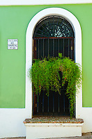 Colorful doorway with planter,  on Hospital Street, Old San Juan.