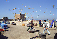 The service road to the fishing docks, surrounded by the Medina walls of Essouira, Morocco