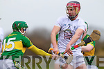 David Butler Kerry in action against Mark Moloney Kildare in the National Hurling League at Abbeydorney on Sunday.