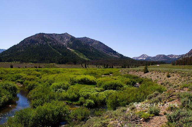 Satr Hope Creek in the Copper Basin in Idaho near Sun Valley