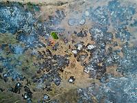 burning of brush in El Potrero, Oaxaca, Oaxaca, Mexico