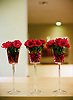 Red rose flower feature, Hotel Bel Ami