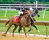 Justforgetaboutit winning at Delaware Park on 7/4/16