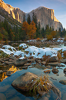 Yosemite National Park, CA: El Capitan (7042 ft) with morning light on the Merced River with snow on the grasses and boulders in late fall.
