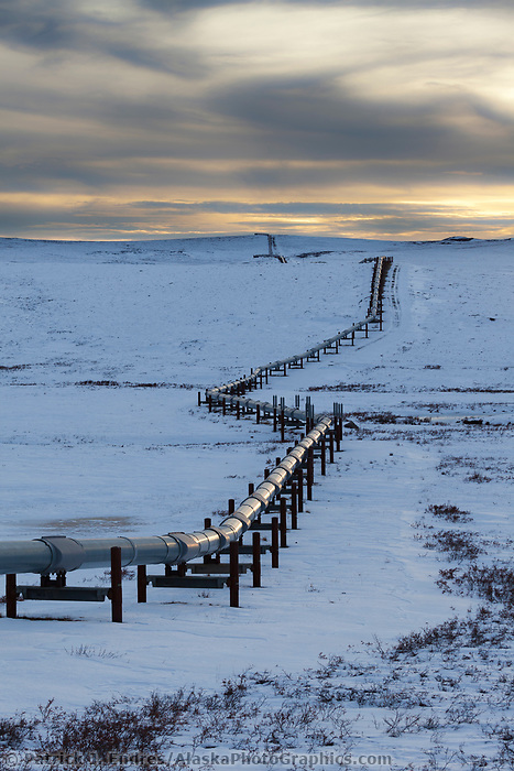 Trans Alaska Oil pipeline traverses Alaska's Arctic North Slope tundra.