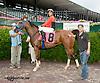 Al Waed winning at Delaware Park on 7/31/13