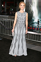 LOS ANGELES - OCT 16:  Lisa Brenner at the Geostorm Premiere at the TCL Chinese Theater IMAX on October 16, 2017 in Los Angeles, CA