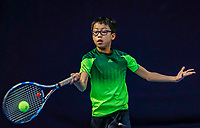 Hilversum, Netherlands, December 3, 2017, Winter Youth Circuit Masters, 12,14,and 16, years, Jessy Tan( NED)<br /> Photo: Tennisimages/Henk Koster