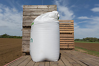 Bag of fertiliser with one to potato boxes<br /> &copy;Tim Scrivener Photographer 07850 303986<br /> ....Covering Agriculture In The UK....