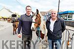 Damien Lawlor (Ballyheigue) and Patrick Scanlon (Ballybunion) at the Ballyduff Horse fair on Sunday