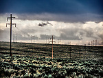 Power poles and lines, stormy summer morning, rain and clouds, Thousands Springs Valley, Idaho.