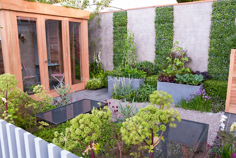 Urban vegetable herb garden flowers with house plant Modern flower beds