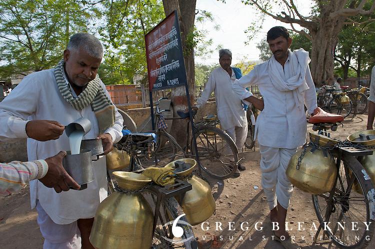Cycling milkmen gather on the fringe of Bundi city from their village outposts to trade milk with local, door-to-door milkmen.