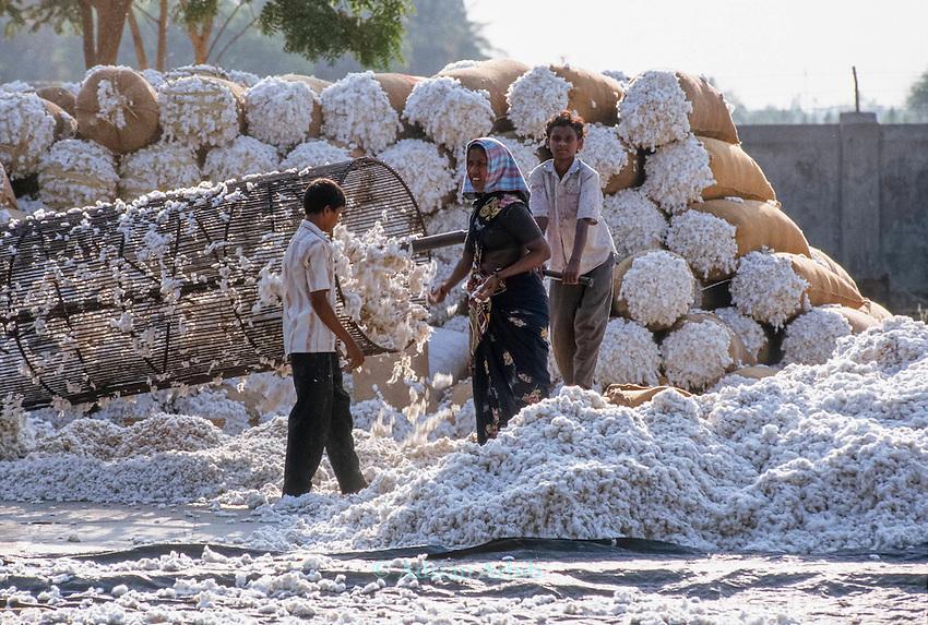 Cotton being milled in Warangal, India