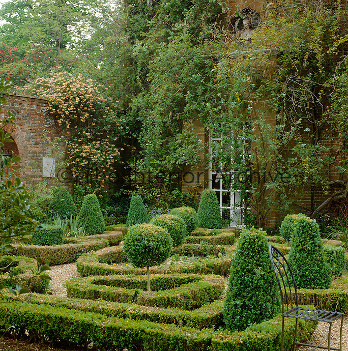 Clipped topiary punctuates the miniature maze of Buxus in this courtyard garden