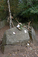 Europe/France/Bretagne/35/Ille et Vilaine/Paimpont: Forêt de Paimpont, mythique Brocéliandre - Tombeau de Merlin l'Enchanteur