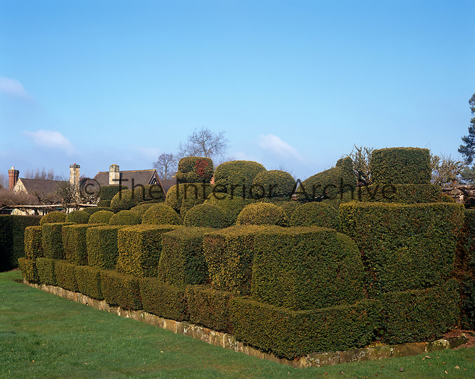 An ancient yew hedge in the gardens of Hever Castle has been clipped into a variety of topiary shapes