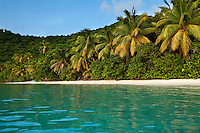 Gibney Beach.Virgin Islands National Park.St. John, US Virgin Islands