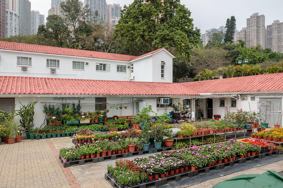 Staff quarters and garden nursery.