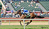 Principessa Ava winning at Delaware Park on 9/20/14