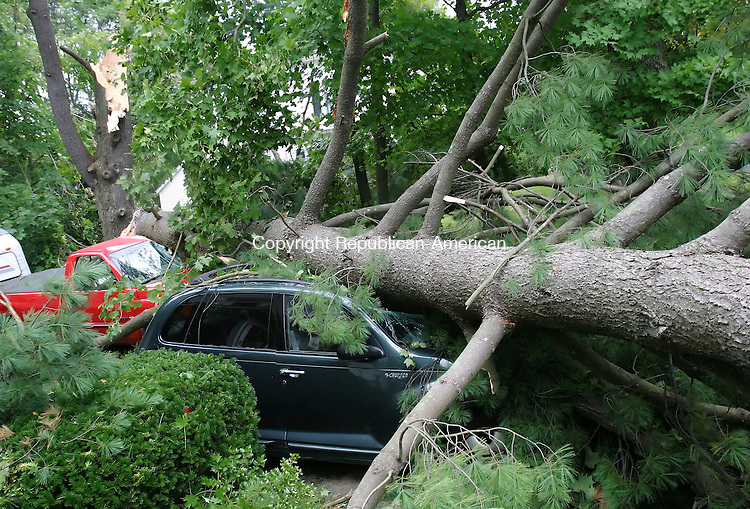 WOODBURY, CT, 02 SEPTEMBER 2006, 090206BZ02-  A large pine tree crashed down crushing two vehicles parked in a driveway at 19 Pleasant St. in Woodbury Saturday.<br />  Jamison C. Bazinet Republican-American