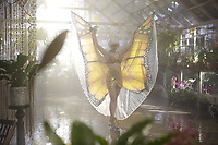 The Butterfly Tree (2017)<br /> Melissa George<br /> *Filmstill - Editorial Use Only*<br /> CAP/MFS<br /> Image supplied by Capital Pictures